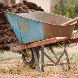 Wheelbarrow used to move compost at Redwood Hill Farm