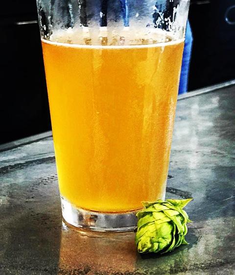 Glass of fresh hop beer alongside a hop cone.